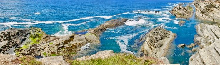 Cape Arago scenic area