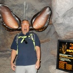 Bat ears?!?