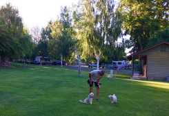 Pups in Dayville, OR