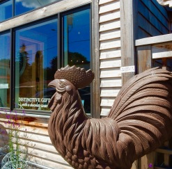 Rooster in Langley