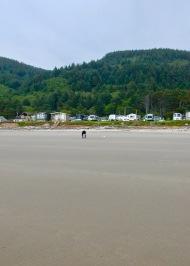 Sea Perch RV resort, Oregon