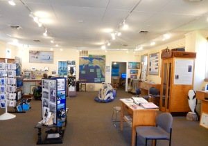 Inside whale center, Langley
